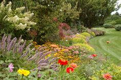 Green With Envy: Garden Inspo From Frederico Azevedo Trees And Shrubs, Flowering Trees, Herbaceous Border, Annual Flowers, Rio Grande Do Sul, The Hamptons, Perennials, Landscape Design, Envy