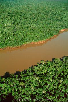 Atlantic rainforest (aerial), Iguacu National Park, Brazil