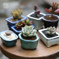 迷你袖珍拇指多肉陶瓷花盆韩国多肉花盆紫砂花盆植物盆栽 办公室-淘宝网