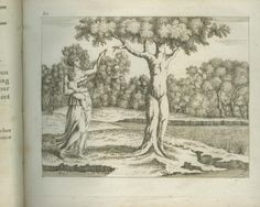 Priapus and Dryope becoming a tree, Ovid's Metamorphoses, Sébastien Le Clerc, 1801