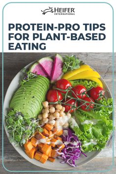 7 Days Alkaline Diet Plan to Healthy Weight Loss With plant based / Vegan diet. An altogether different category of foods alkaline in nature to simply prevent your blood from becoming too acidic and promoting your health in endless ways Alkaline Diet Plan, Alkaline Diet Recipes, Healthy Recipes, Healthy Snacks, Plant Based Vegan Diet, Plant Based Eating, Chef Salad Recipes, Grapefruit Diet, Diet Reviews