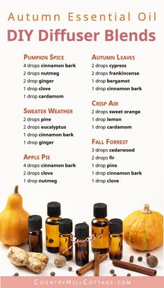 Essential Oil Blends for Fall – 6 DIY Autumn Diffuser Blend Recipes Learn how to make your home smell like autumn with 6 seasonal essential oil blends for fall! Diy Essential Oil Diffuser, Fall Essential Oils, Diy Diffuser Oil, Purification Essential Oil, Essential Oils Energy, Essential Oil Perfume, Perfume Diesel, Perfume Fragrance, Diffuser