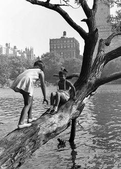 Vintage New York City prints