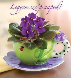 Fun And Eco-Helpful Solutions To Remodel Your Yard African Violets Party Table Centerpieces, Summer Party Decorations, Flower Centerpieces, Watermelon Punch, Watermelon Cake, Beautiful Flower Arrangements, Beautiful Flowers, Food Themes, Summer Flowers