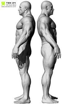 bodybuilder_03.jpg (574×815)