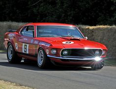 1969 Ford Mustang fastback Boss 302 Trans Am race car in action!