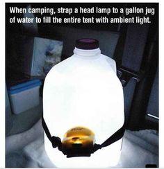 Insta lamp