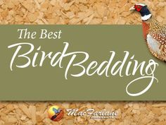 Pheasant bedding tips.