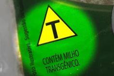 Os alimentos transgênicos sempre geraram muita polêmica! Entenda mais sobre os Alimentos Transgênicos!  Artigo aqui => http://www.gulosoesaudavel.com.br/2012/08/02/entenda-sobre-alimentos-transgenicos/