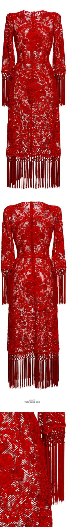 Dolce & Gabbana Rose Embroidered Netted Dress With Fringe Trim SS 2015