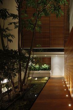 wood and lighting in house entrance