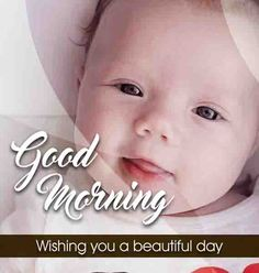 In this site, All Good Morning Pictures, Images, Quotes, Wallpapers, Good Morning, Images with good morning, Good Morning Pics, Love good morning image.#goodmorningimage #goodmorningquotes #goodmorning #goodmorningmessages #imagesofgoodmorning #good #morning #loveimages #flowerlove #flowermessage #goodmorningpics #photosofgoodmorning #goodmorninglovemmessage #gudmorningpics #goodmorningpic #Goodmorningimagesdownload #free #good #morning #Images #download #goodmorninglove