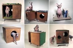 Mid-century Modern Style for Your Modernist Cat|moderncat :: cat products, cat toys, cat furniture, and more…all with modern style