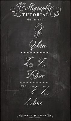 Calligraphy tutorial Letter Z