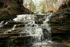 I came across this waterfall while driving in Blount County, Alabama. I call them Warrior Falls but they might be Mardis Mills Falls or Graves Falls.