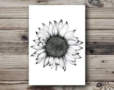 Sunflower Black and
