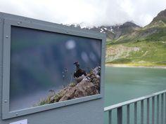 Exposition photos sur le couronnement du barrage de Sebastien Tinguely jusqu'à fin septembre