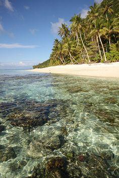 Corals and white sand beach, Ofu, American Samoa
