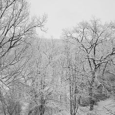 Welcome to my winter wonderland #Sibiu #winter #snow #Romania #Sibiu #Europe #trees #scenic #scenery #nature #outdoors #great #amazing #beautiful #wonderful #nice #awesome #cold #snowflake #transylvania