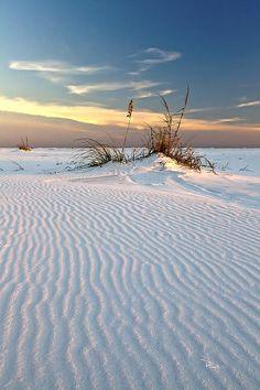 Fort Pickens Unit of Gulf Island National Seashore, Florida, USA. photo © 2013 Richard Roselli
