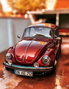Old Bug, Beetle Car, Volkswagen Group, Retro Baby, Cute Animal Drawings, Cute Cars, Commercial Vehicle, Vw Beetles, Vintage Cars
