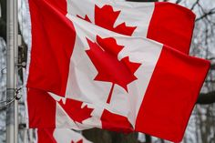 Canadians can't get enough of NYC's real estate market! | #nycrealestate #canada