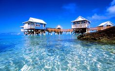 Get lost in awe as you visit Bermuda and experience the pink sand beaches that go well with sapphire blue waters. Description from travelersexpert.blogspot.com. I searched for this on bing.com/images
