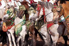 Fantasia au Maroc Art et culture