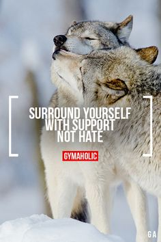 Surround Yourself With Support Not Hate Strong people dont...