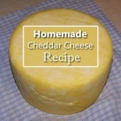 Homemade Cheese, Homemade Butter, How To Make Cheese, Food To Make, Cheddar Cheese Recipes, Cooking Cheese, No Dairy Recipes, Goat Recipes, Beer Recipes