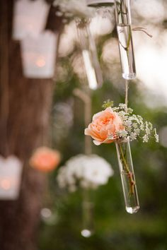 Loving these test tubes filled with fresh florals! | Hilary Cam Photography