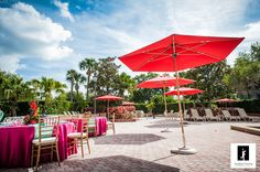 Tropical outdoor poolside wedding.  Tampa Westshore Marriott, Florida weddings!