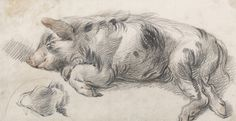 James Ward Sleeping Pig print for sale. Shop for James Ward Sleeping Pig painting and frame at discount price, ships in 24 hours. Pig Drawing, Painting & Drawing, Sleeping Drawing, James Ward, Pig Illustration, Illustrations, Google Art Project, Pig Art, Most Famous Paintings