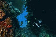 The Secret to Neutral Buoyancy Underwater