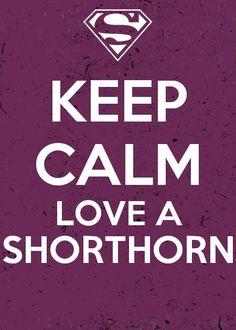 Love a shorthorn