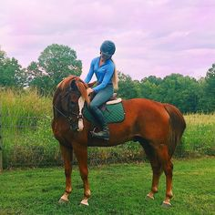 """5,131 curtidas, 14 comentários - Reagan Ibach (@reaganibach) no Instagram: """"Low quality photo high quality horse Just got home from the AECs! Such a fun weekend, miss it…"""""""