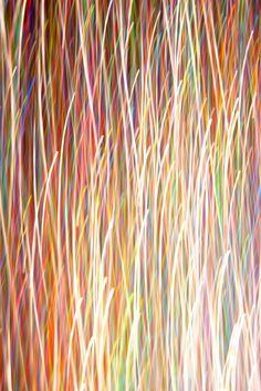 Glitter - Cecilie Karoline