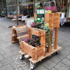 woody-woody_plant-an_moestuin_hollands-hout_van-eigen-bodem_foto-product-08_rechthoek_drietrap_03.png (433×433)