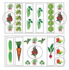 Garden to Table: Making a Plan & Growing Dinner! Make A Plan, How To Make, Home Grown Vegetables, Dinner, Holiday Decor, Garden, Home Decor, Dining, Garten