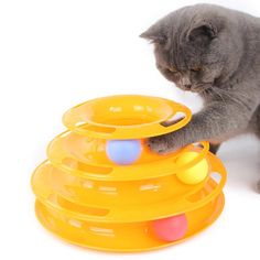 Ball Toys For Cat Tower of Tracks Cat Toys mascotas gatos Pet Toy with the Balls Pet Amusement Cat Interactive Board Game Toys Diy Cat Toys, Pet Toys, Cool Cats, Diy Jouet Pour Chat, Funny Cats, Funny Animals, Animals Dog, Interactive Cat Toys, Interactive Board
