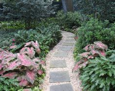 Beau New Orleans Landscape Design, Pictures, Remodel, Decor And Ideas   Page 4  Garden