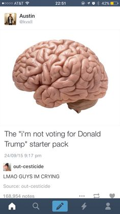 "Funniest Memes - [The ""i'm Not Voting For Donald Trump"" Starter Pack] Just For Laughs, Best Memes, Funniest Memes, Hilarious Memes, Tumblr Funny, Funny Posts, Laugh Out Loud, Laugh Laugh, Dumb And Dumber"