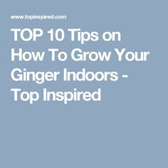 TOP 10 Tips on How To Grow Your Ginger Indoors - Top Inspired