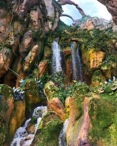 Just in case you haven't had enough #Pandora photos! Seriously cannot wait to go back!  #VisitPandora #Orlando #WaltDisneyWorld