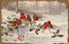 Christmas-Red-Breast-Robins-on-Holly-Berry-Snowy-Forest-Gold-Icicles-John-Winsch