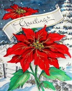 Indoor Benches - A Single Is Ideal For Creating A Cozy Den House Pretty Christmas Poinsettia. Christmas Greeting Card Messages, Christmas Card Images, Vintage Christmas Images, Vintage Greeting Cards, Vintage Holiday, Christmas Pictures, Xmas Cards, Christmas Greetings, Holiday Cards