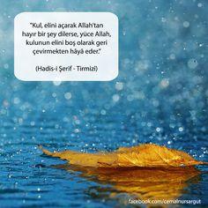 """""""Kul, elini açarak Allah'tan hayır bir şey dilerse, yüce Allah, kulunun elini boş olarak geri çevirmekten hâyâ eder."""" (Hadis-i Şerif - Tirmizî) Muhammed Sav, Writing Pens, Allah Islam, Sufi, Hadith, Islamic Quotes, Picture Quotes, Pray, Religion"""