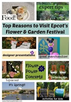 Top Ten Reasons to Visit Flower & Garden Festival #Epcot #FlowerandGarden