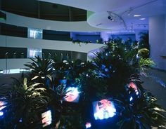 (the Worlds of) Nam June Paik Nam June Paik, Color Television, Video Installation, Tv Land, Live Plants, Art Blog, American Art, Holiday Decor, Garden