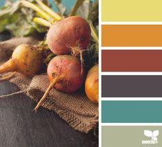 veg hues by Design Seeds